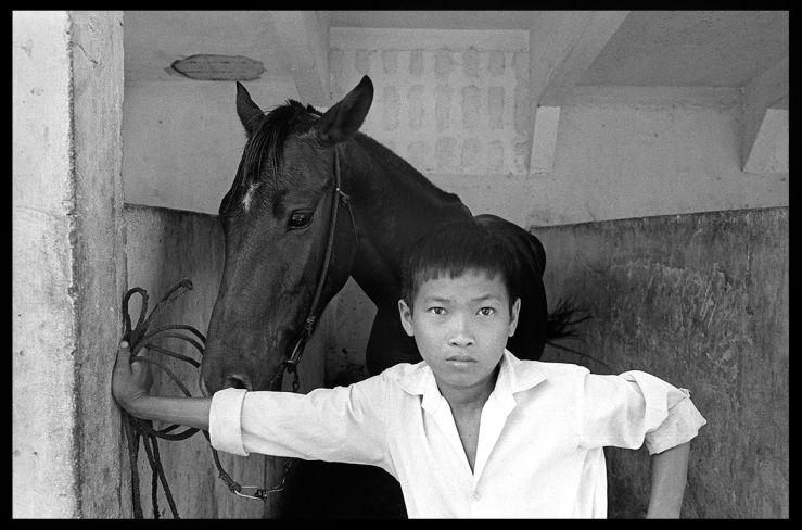 Guarding my Horse